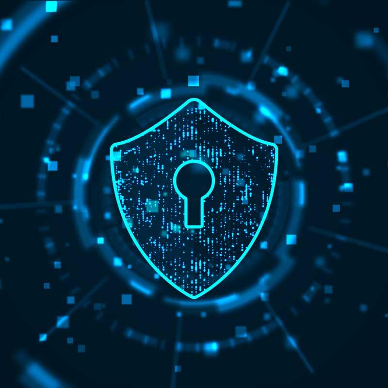 Website security logo